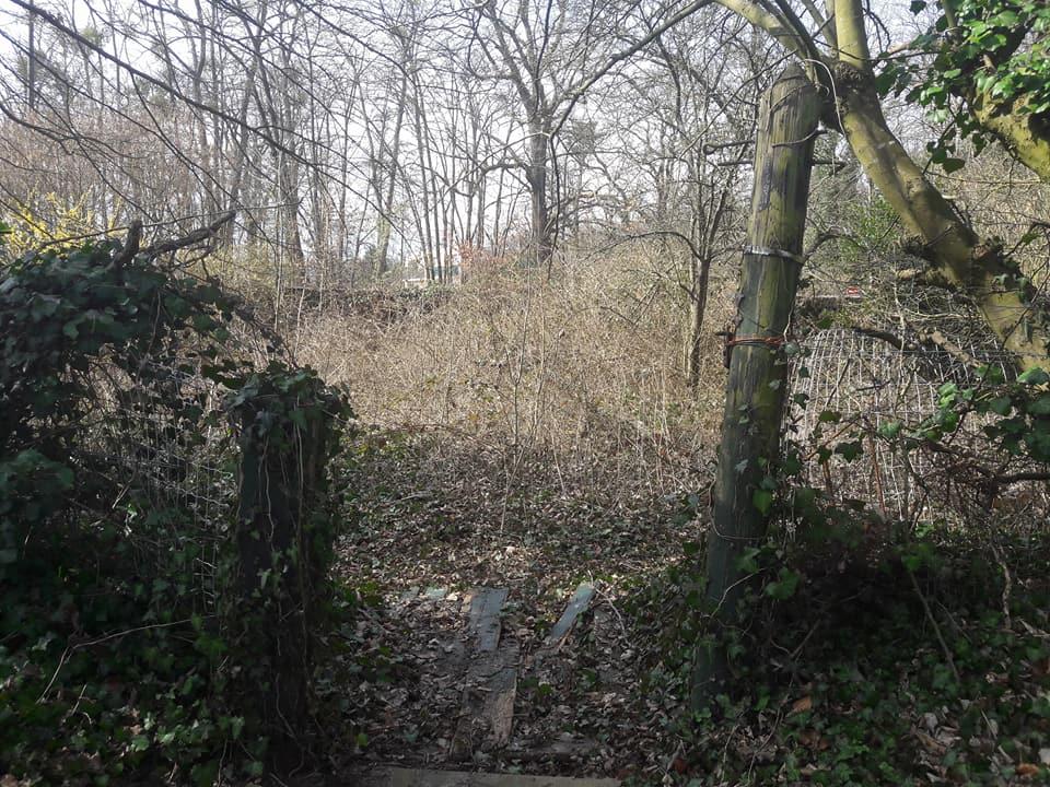 Jardin Avant 3